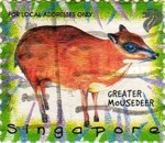 [The 25th Anniversary of Singapore Zoological Gardens - Launch of New