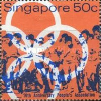 [The 10th Anniversary of National People's Association, type CD]