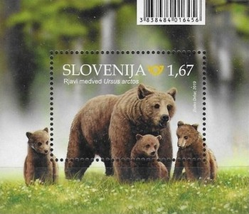 [Fauna - Brown Bear, type ]