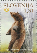 [Fauna - Brown Bear, type ARW]