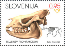 [Fossil Mammals in Slovenia, type AST]