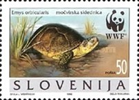 [WWF - European Pond Tortoise, type DO]