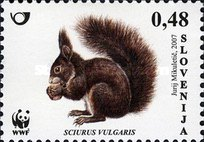 [Fauna - WWF - Red Squirrel, type UO]