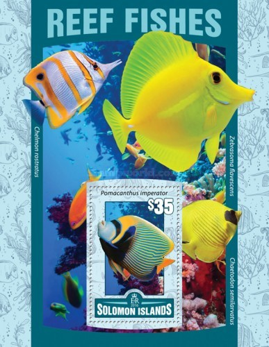 [Marine Life - Reef Fishes, Typ ]
