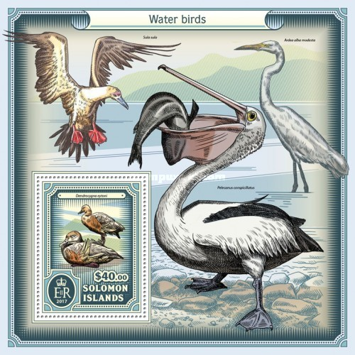[Water Birds, type ]