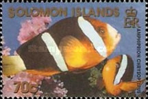 [Reef Fish, Typ AHK]