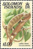 [Reptiles and Amphibians, type ZJO]