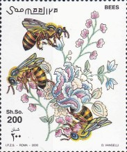 [Honey Bee, type AEA]