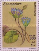 [Water Lilies, type AIG]