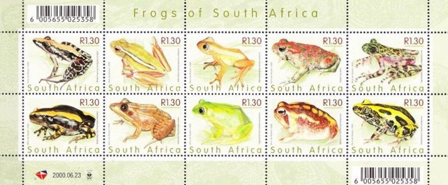 [Frogs of South Africa, Typ ]