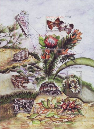 [Ecology of Table Mountain - Self-Adhesive, Typ ]
