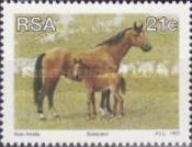 [Animal Breeding in South Africa, Typ AAP]