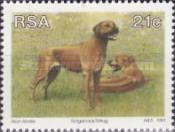 [Animal Breeding in South Africa, Typ AAS]