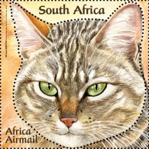 [Small African Cats, Typ BUE]