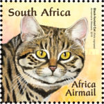 [Small African Cats, Typ BUH]