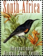 [South African Birds, Typ BYP]