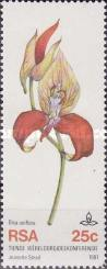 [The 10th World Orchid Conference, Durban, Typ SI]
