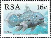 [The 50th Anniversary of the Discovery of Coelacanth, Typ YU]