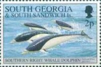[Whales and Dolphins, Typ CA]