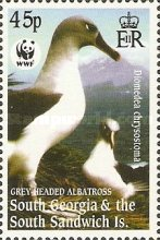 [Worldwide Nature Protection - Gray-headed Albatross, type HI]