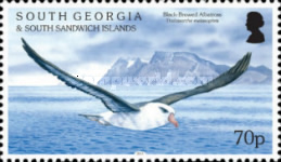 [Birds - Albatrosses, type QZ]