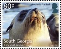 [Marine Life - Fur Seals, type TK]