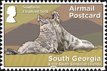 [Fauna - Elephant Seal, type VL]