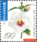 [Rose of Sharon, type CDY]