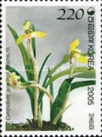 [Orchids, type CGH]