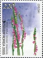 [Orchids, type CGJ]