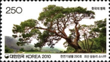 [Old & Historic Trees of Korea, type CQO]