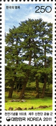 [Old & Historic Trees of Korea, type CSP]