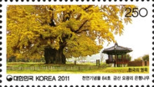 [Old & Historic Trees of Korea, type CSQ]