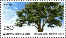 [Old & Historic Trees of Korea, type CSR]