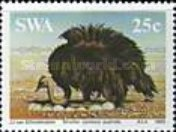 [South African Ostrich, type KV]