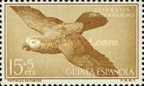 [Charity Stamps - Parrots, Typ CF]