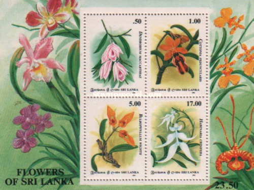 [The 60th Anniversary of Orchid Circle of Ceylon, Typ ]