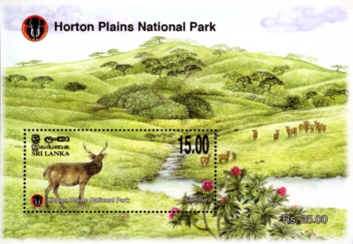 [Horton Plains National Park, type ]