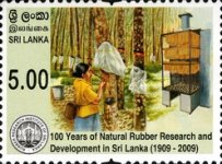 [The 100th Anniversary of Natural Rubber Research & Development in Sri Lanka, Typ AVK]