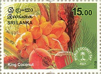 [World Coconut Day, type BSH]