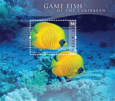 [Marine Life - Game Fish of the Caribbean, type ]
