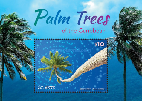 [Palm Trees of the Caribbean, type ]