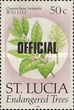 [Endangered Trees - St. Lucia Stamps of 1990 Overprinted