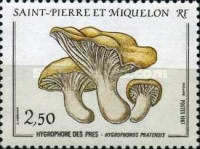 [Mushrooms, Typ HV]