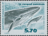[Whales, Typ PU]