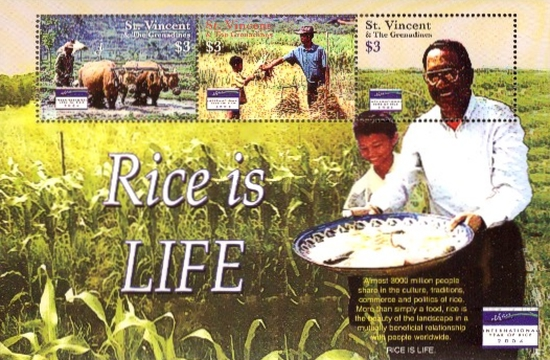 [Year of Rice, Typ ]