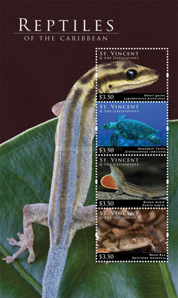 [Reptiles of the Caribbean, Typ ]