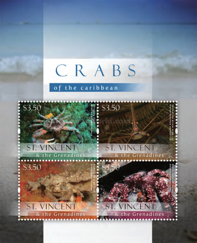 [Crabs of the Caribbean, Typ ]