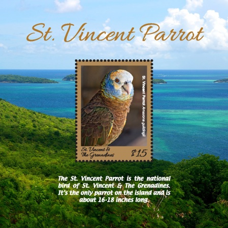 [St. Vincent Parrot - National Bird of St. Vincent and The Grenadines, Typ ]