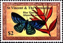 [Butterflies of the Caribbean, Typ DFY]